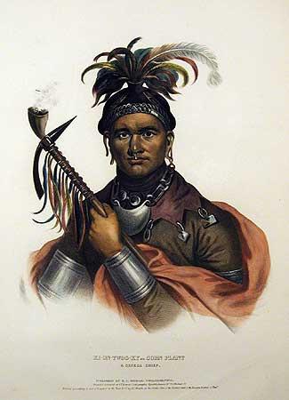 seneca indian tribe essay